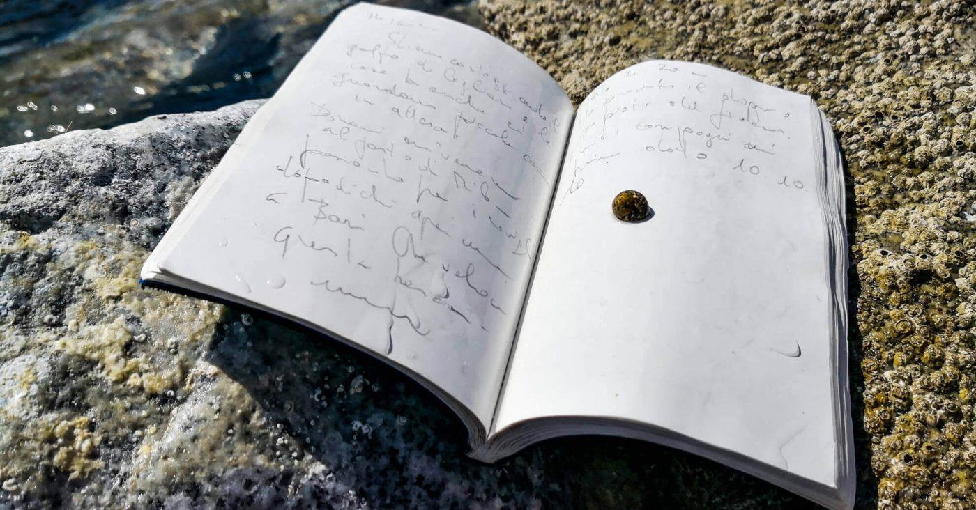 atlaua-diving-logbook