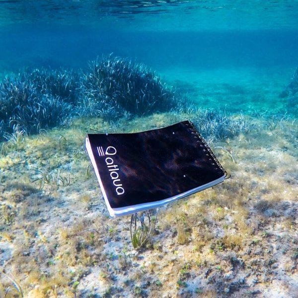 block notes in neoprene per biologi marini