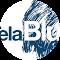 pagina rivenditori cartoleria impermeabile Atlaua - Tela Blu